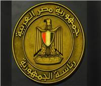 المتحدث الرئاسي: سيكتب التاريخ مثابرة ونجاح المصريين