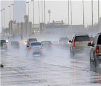 الأرصاد: أمطار على السواحل الشمالية غدًا.. والعظمى بالقاهرة 16