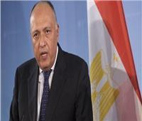 الليلة..وزير الخارجية يكشف النقاب عن التحديات التى تواجه الدبلوماسية المصرية في2019