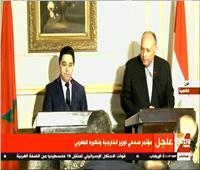 فيديو|شكري: مصر أوقفت شحنات أسلحة مهربة من تركيا لزعزعة استقرار ليبيا