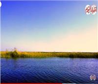 فيديو| معلومات لا تعرفها عن بحيرة كينج مريوط في الإسكندرية