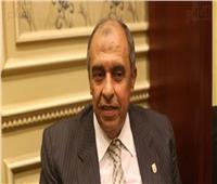 تكليف «محمود راضي» مديرا عاما للمكتب الفني بوزارة الزراعة