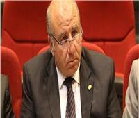 فيديو| برلماني : استضافة مصر لكأس الأمم الأفريقية 2019 الأهم عالميا