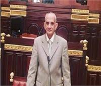 برلماني يوجه طلب إحاطة بشأن توفيق أوضاع 314 فردًا بنجعي العناقلة