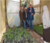 محافظ الجيزة: تحويل 43 مشتلا للزهور والنباتات لوحدات إنتاجية