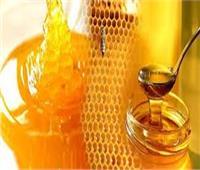 فيديو  اتحاد النحالين: تجميد العسل بالشتاء يزيد من قيمته الغذائية