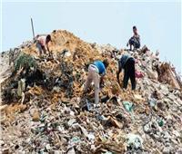 إنشاء 3 مراكز لتجميع القمامة بالشرقية للقضاء على المقالب العشوائية