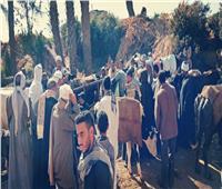صور| «البحوث الزراعية» تنفذ 6 قوافل علاجية بيطرية بالمجان في قرى سوهاج