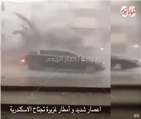 فيديو| عواصف تقتلع الأشجار وأعمدة الإنارة في الإسكندرية