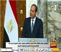 فيديو| السيسي: مصر ستظل السند والنصير لجنوب السودان