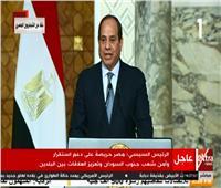فيديو| السيسي: العلاقات بين مصر وجنوب السودان تشهد ازدهارًا غير مسبوقاً