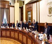بأمر رئيس الوزراء.. 5 محافظات تستعد لكأس الأمم الإفريقية