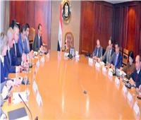 وزير التجارة يبحث مع نائب رئيس وزراء أرمينيا نتائج مفاوضات التجارة الحرة