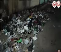 القمامة تحاصر الوحدة المحلية بـ«ساقية أبو شعرة» بالمنوفية.. فيديو