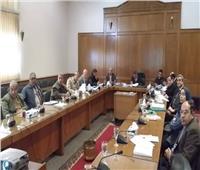 إنشاء وحدة تدخل سريع لحماية نهر النيل