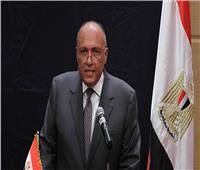 شكري يرأس وفد مصر في قمة بيروت الاقتصادية