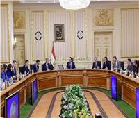 رئيس الوزراء: نتطلع للتعاون مع فرنسا في مجال تصنيع البلازما ومشتقات الدم