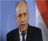«شكري» و«لافروف» يبحثان سبل الحل السياسي للأزمة السورية