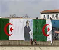 الجزائر... الجيش يعلن موقفه من الانتخابات الرئاسية