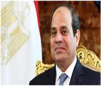 دفاع النواب: الرئيس السيسي أنقذ مصر من الدمار