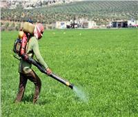 فيديو.. الزراعة تحذر من المبيدات الحشرية وتطالب بقانون رادع
