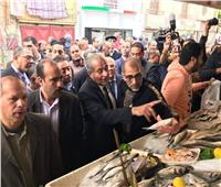 وزير التموين: مجمع أسماك بورسعيد يضاهي كبري الأسواق في العالم