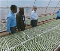 مصر في قلب القارة السمراء .. 8 مزارع مشتركة ونقل الخبرات الزراعية