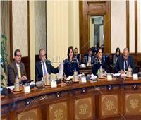 وزير الزراعة: توقيع عقد إنشاء المزرعة المشتركة الثانية بين مصر وزامبيا