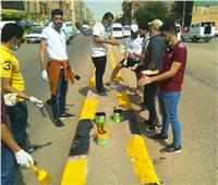 محافظ أسوان يشيد بمشاركة الشباب في إبراز المظهر الجمالي للمدينة