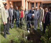 رئيس جامعة المنوفية يغرس شجرة بحديقة «الإدارة العامة»