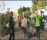 مستقبل وطن يقود حملة لنظافة الأحياء السكنية في «الوادي الجديد»