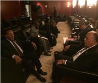 وزير الخارجية يبحث مع نظيره التنزاني مشروعات التعاون المشترك بين البلدين