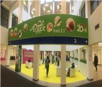 «تنمية الصادرات» تنظم المشاركة المصرية بمعرض «فروت لوجستيكا» ببرلين