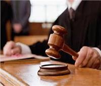 السجن المشدد 15 عاما لقتله مزارع صان الحجر بالشرقية