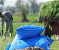 أمين الوحدة العربية: نستورد كل غذائنا من الخارج وخصصنا مليارات لاستراتيجية الأمن الغذائي