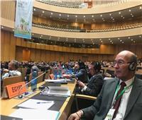 «الزراعة» تشارك في المؤتمر الأول لسلامة الغذاء بالدول الأفريقية