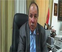 برلماني: مصر في حاجة للتعديلات الدستورية
