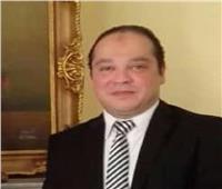 مُحلل سياسي: مصر ستُحقق إنجازات للقارة السمراء