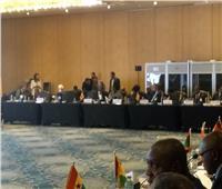 رئيس الدستورية يطلق الشبكة الإلكترونية لربط المحاكم العليا بإفريقيا