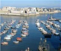 فتح ميناء الصيد ببرج البرلس بعد تحسن الأحوال الجوية