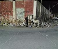 صور| الاهمال يحول شارع الكاتب الصحفي «أحمد بهاء الدين» لمقلب قمامة