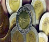 «المالية»: لا نية لإصدار عملة معدنية جديدة من فئة المائة جنيه