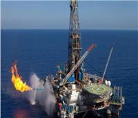 موقع أمريكي: مستقبل النفط والغاز في مصر مشرق للغاية