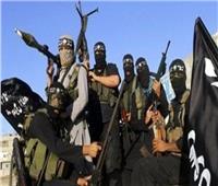 فيديو| مستشار مفتي الجمهورية: الجماعات الإرهابية تلفظ أنفاسها الأخيرة
