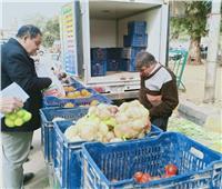 صور| طرح الخضروات بأسعار مخفضة بمنافذ الزراعة