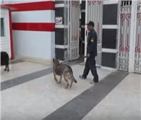 شاهد| حملات مكبرة لضبط مروجي المخدرات بأكبر الأندية في مصر
