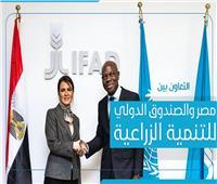 إنفوجراف| التعاون بين مصر والصندوق الدولي للتنمية الزراعية «ايفاد»