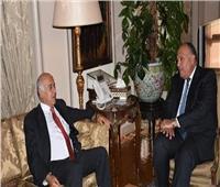 فيديو| خبير دولي: موقف مصر ثابت بشأن القضية الفلسطينية