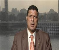 فيديو| مختار غباشي: لو اجتمعت إرادة مصر والسعودية لتحقق الكثير للعرب