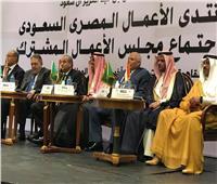 «المصيلحي» يقترح تشكيل لجنة متخصصة مصرية سعودية لمتابعة ما يتخذ من قرارات